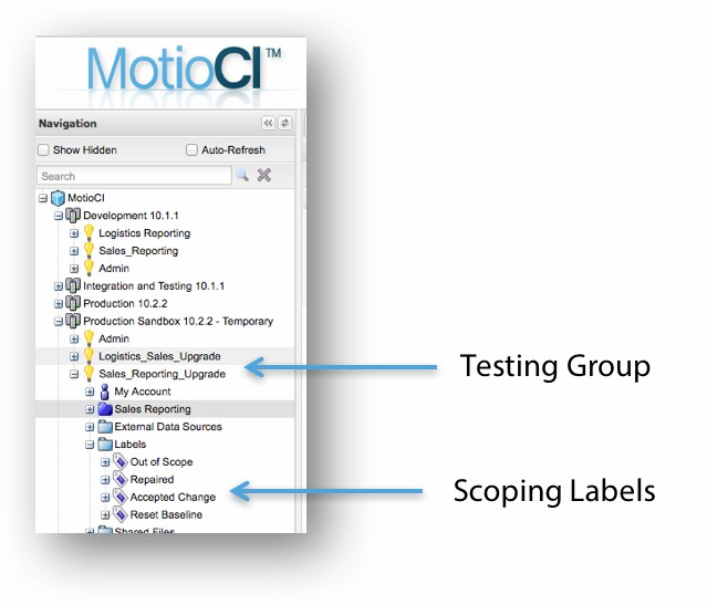 MotioCI testing group and scoping labels
