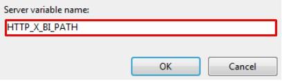 server variable name