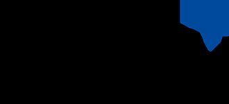Talan Solutions logo
